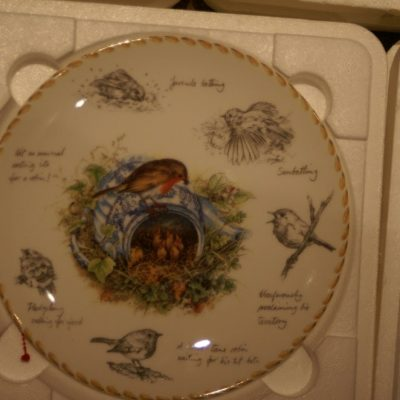 Wedgewood The Robin From Birdwatchers Notebook Limited Plate ltd